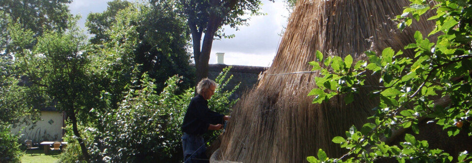 Bjarne Johansen laver enestående konstruktioner og skæve værker – Lavet og inspireret af naturens egne materialer