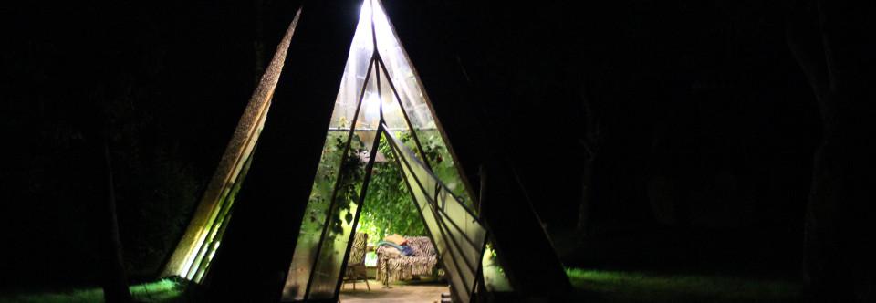 Drivhus om natten med åben dør